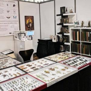 exposants-createurs-2020-international-lille-tattoo-convention-france-le-franc-curieux